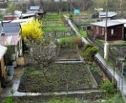 Nenasytnost KV magistrátu pokračuje: Chce připravit zahrádkáře o půdu