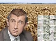Podávám trestní oznámení na Babiše: Manipulací s obilím stát tratil 200 milionů