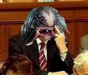 Kdo je predátorem Ústavy, pane Kalousku? Zeman?